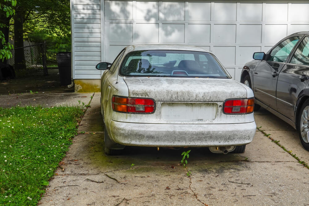 Picture of a dirty, non-running white car parked in a driveway